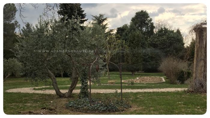 jardin-spa-baumaniere-baux-de-provence-belle-a-40-ans