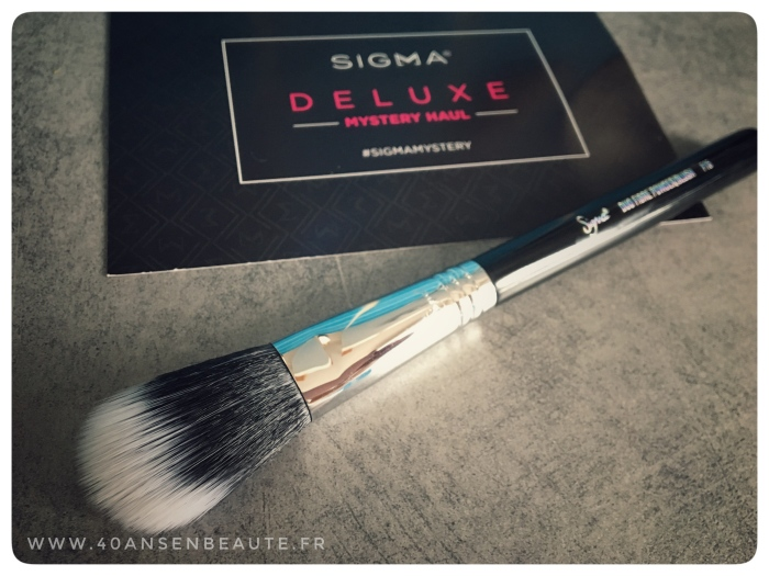 SIGMA-DELUXE-HAUL-BRUSH-F15